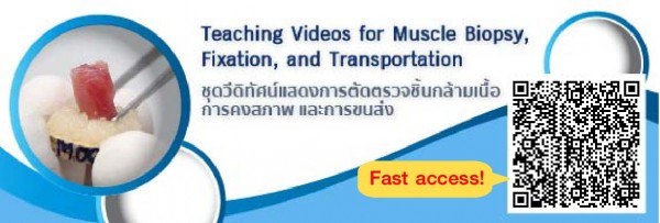 Muscle video banner